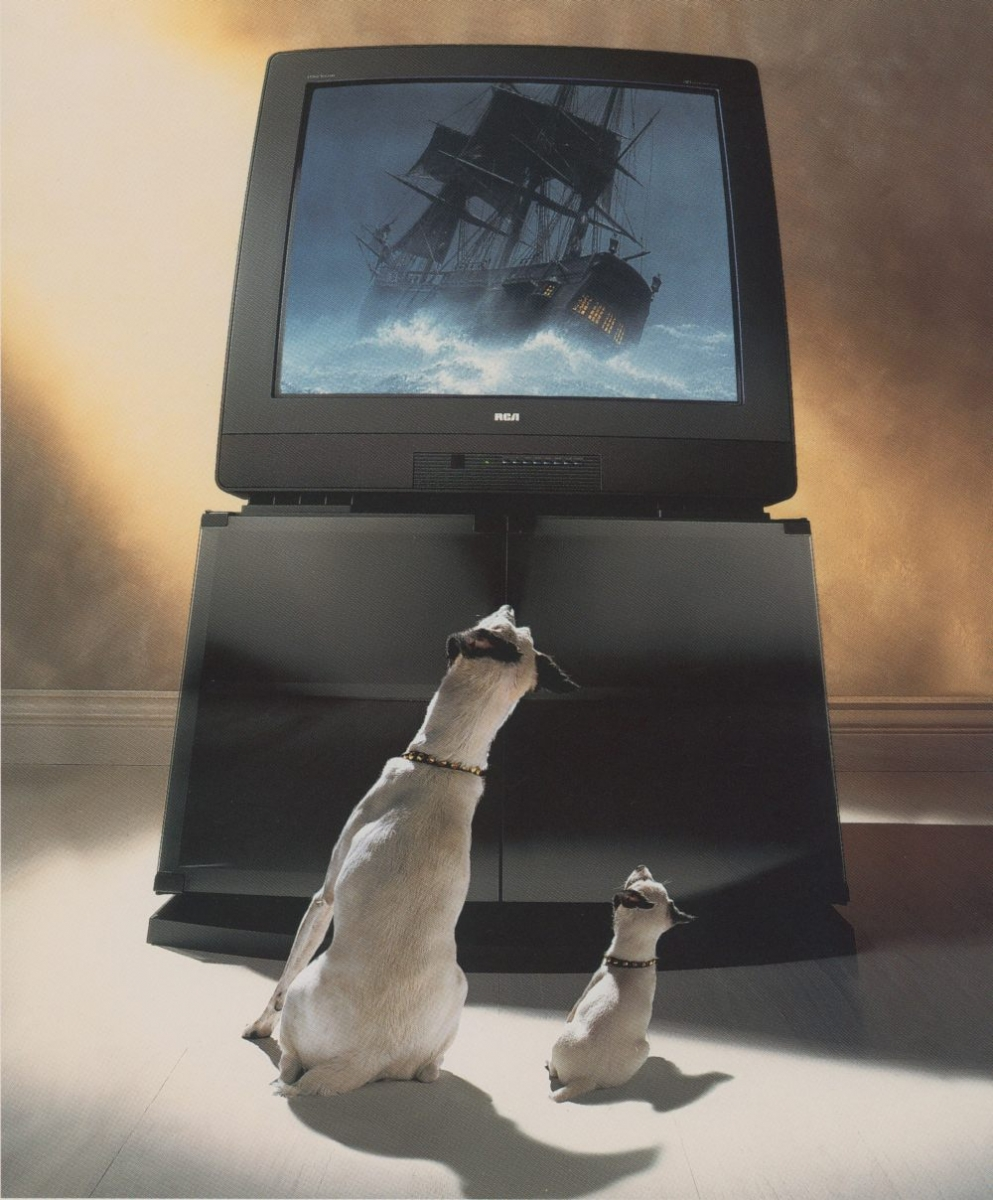 Chipper and Nipper sit in front of a tv watching a ship on screen