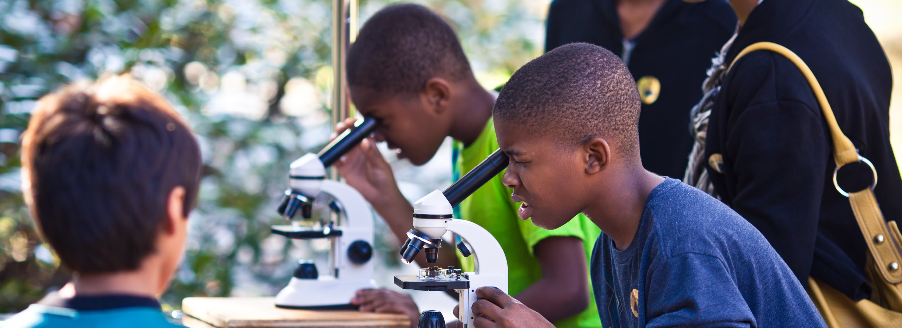 Children looking through microscopes at Hagley