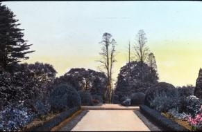 Hand-colored lantern slide showing a garden pathway at the Upper Gardens at Longwood.