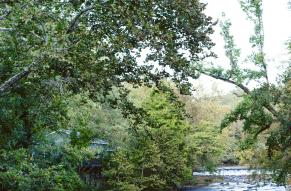 The Brandywine at Hagley Museum and Library